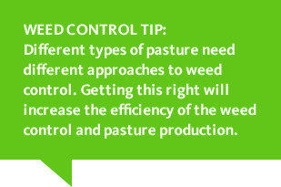 Weed control tip