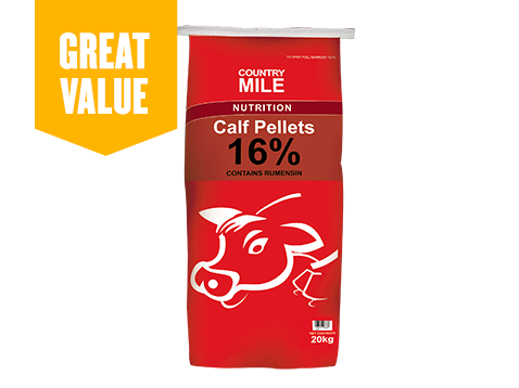 Country Milk Calf Pallets