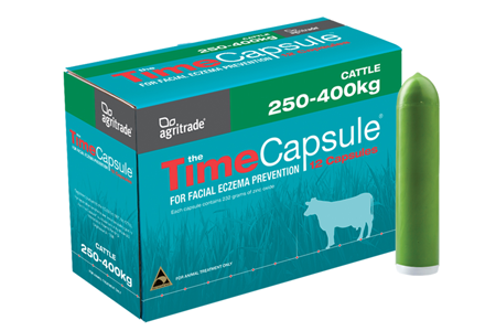 Shop Time Capsules