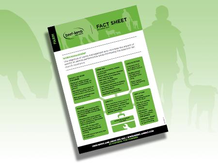 Worm Management Fact Sheet