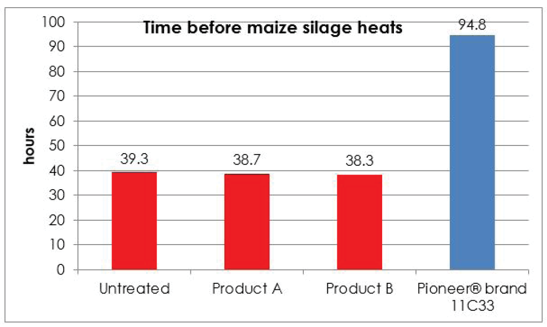 Time before maize silage heats graph