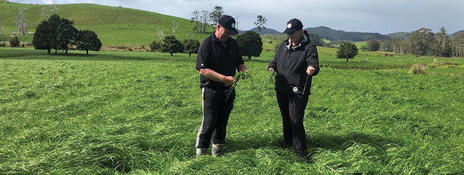 The new tool to lift pasture quality and density