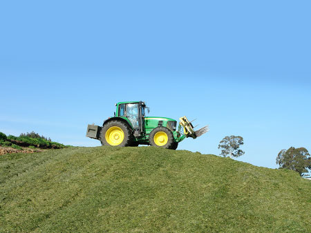 Make better pasture silage this spring