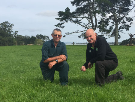 High performance ryegrass for high performance farms