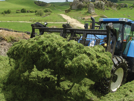 Maximise returns from pasture and silage this spring
