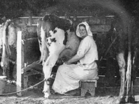Dairy women vital to the industry's success