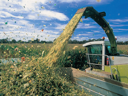 Get the most from your maize silage stack