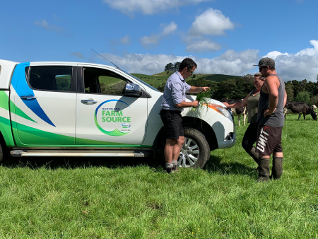 Pasture Collaboration Pays off in Northland
