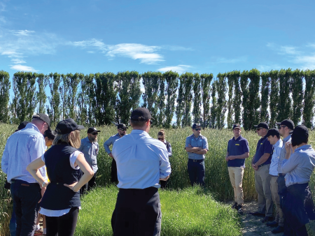Farm Source Team Cultivates their Pasture and Forage Knowledge